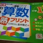 中級算数習熟プリント 小学1年生【授業の復習・先取り学習に最適!】